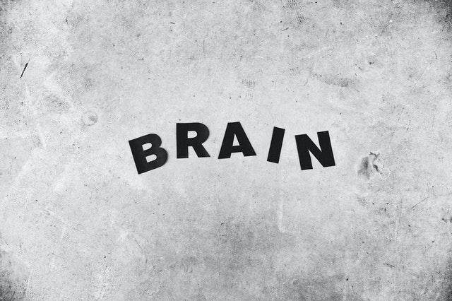 How to Keep Brain Healthy